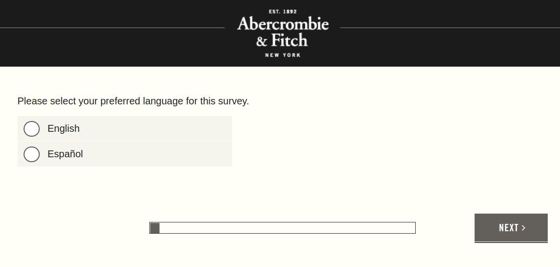 Abercrombie Fitch Survey