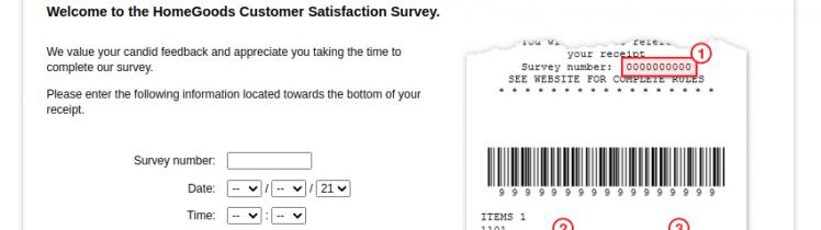 HomeGoods Survey logo